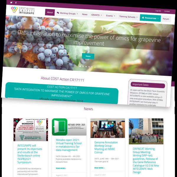 Web design and development with wordpress - integrape.eu - Verona - Italia