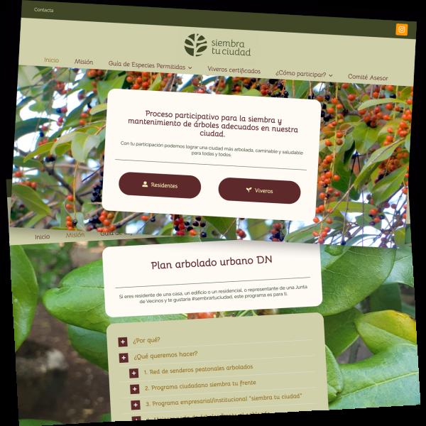 Web design with WordPress for Republica Dominicada 2020